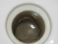 小学校のトイレにおいて尿石の除去
