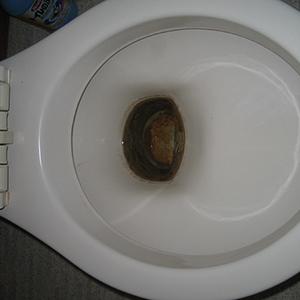 洋式便器内の尿石を除去