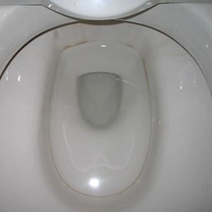 洋式便器の水垢の洗浄